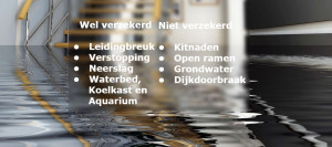 wat-dekt-de-verzekering-waterschade_graphic